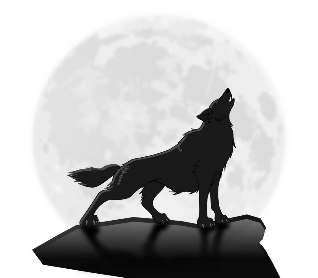 """Wolf at the moon"""