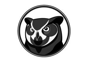 Owl Black and White Head