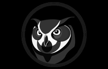 Owl Black and White Head