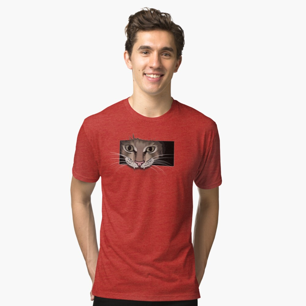 Gray cat on red t-shirt